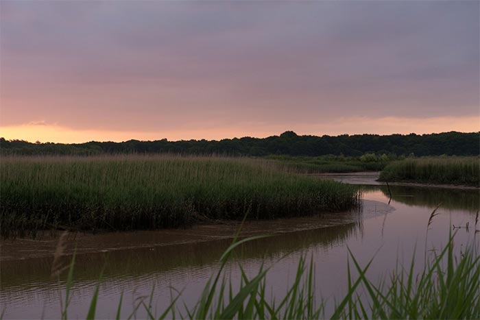 Dawn at Snape Photograph: Aldeburgh Festival 2016